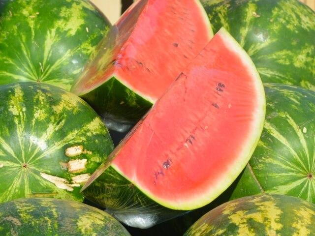 Melonensorten Wassermelone