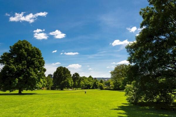 Westfalenpark Dortmund Wiese