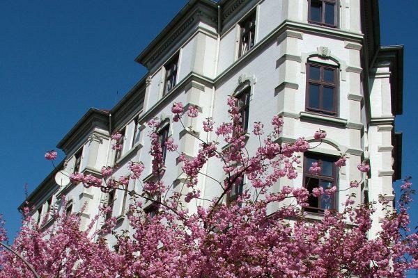 Hamburg Hamburg Ottensen-Tour